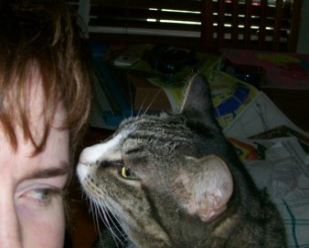 A picture of a grey tabby smelling the head of author jody wallace and thinking it smells like an interesting color scheme if that scheme is loser