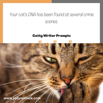 A catty writer prompt where your cat's DNA has been found at several crime scenes. DNA at crime scenes.