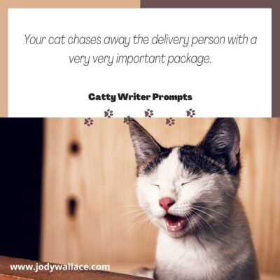Your cat chases away the delivery person with a very important package
