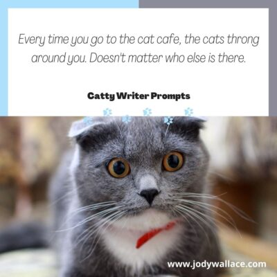 Every time you go to the cat cafe, the cats throng around you. Doesn't matter who else is there. Catty Writer Prompt.