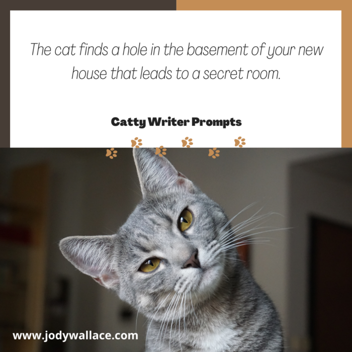 cat finds secret room! A writer prompt with a cute grey kitty on it that says 'your cat finds a hole in the basement of your new home that leads to a secret room'